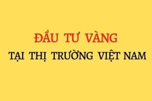 Dau-tu-vang-tai-thi-truong-viet-nam