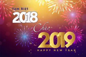 Tạm-Biệt-2018-Chào-2019-Happy-New-Year_Phamson_17122019
